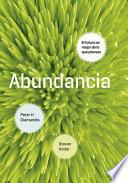Libro de Abundancia