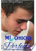 Libro de Mi Chico Perfecto