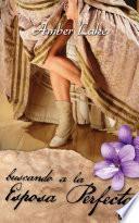 Libro de Buscando A La Esposa Perfecta