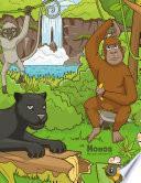 Libro de Monos Libro Para Colorear 3 & 4