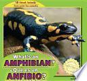 Libro de What S An Amphibian? / �qu_ Es Un Anfibio?