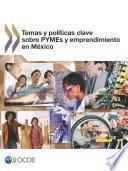 Libro de Temas Y Políticas Clave Sobre Pymes Y Emprendimiento En México