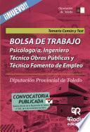 Libro de Bolsa De Trabajo. Psicólogo/a, Ingeniero Técnico Obras Públicas Y Técnico Fomento Empleo