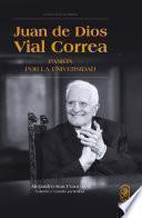 Libro de Juan De Dios Vial Correa