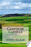 Libro de Campos De Castilla