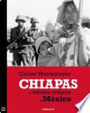 Libro de Chiapas