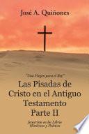 Libro de Las Pisadas De Cristo En El Antiguo Testamento