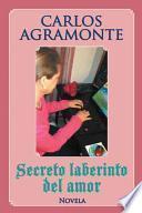 Libro de Secreto Laberinto Del Amor