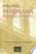 Libro de Panorama Desde El Puente
