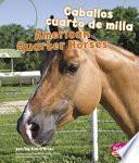 Libro de Caballos Cuarto De Milla/american Quarter Horses