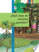 Libro de ¿qué Clase De Secretos Guardan?