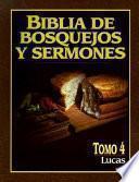 Libro de Biblia De Bosquejos De Sermones