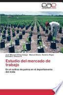 Libro de Estudio Del Mercado De Trabajo