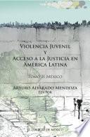 Libro de Violencia Juvenil Y Acceso A La Justicia.