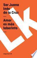 Libro de Amor Es Más Laberinto