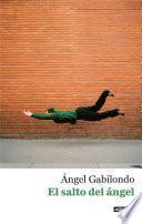 Libro de El Salto Del ángel. Palabras Para Comprendernos