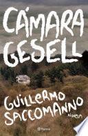Libro de Cámara Gesell