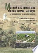 Libro de MÁs AllÁ De La Competencia AgrÍcola Hispano MarroquÍ