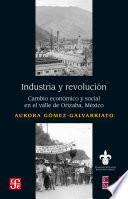 Libro de Industria Y Revolución