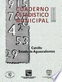 Libro de Calvillo Estado De Aguascalientes. Cuaderno Estadístico Municipal 1998
